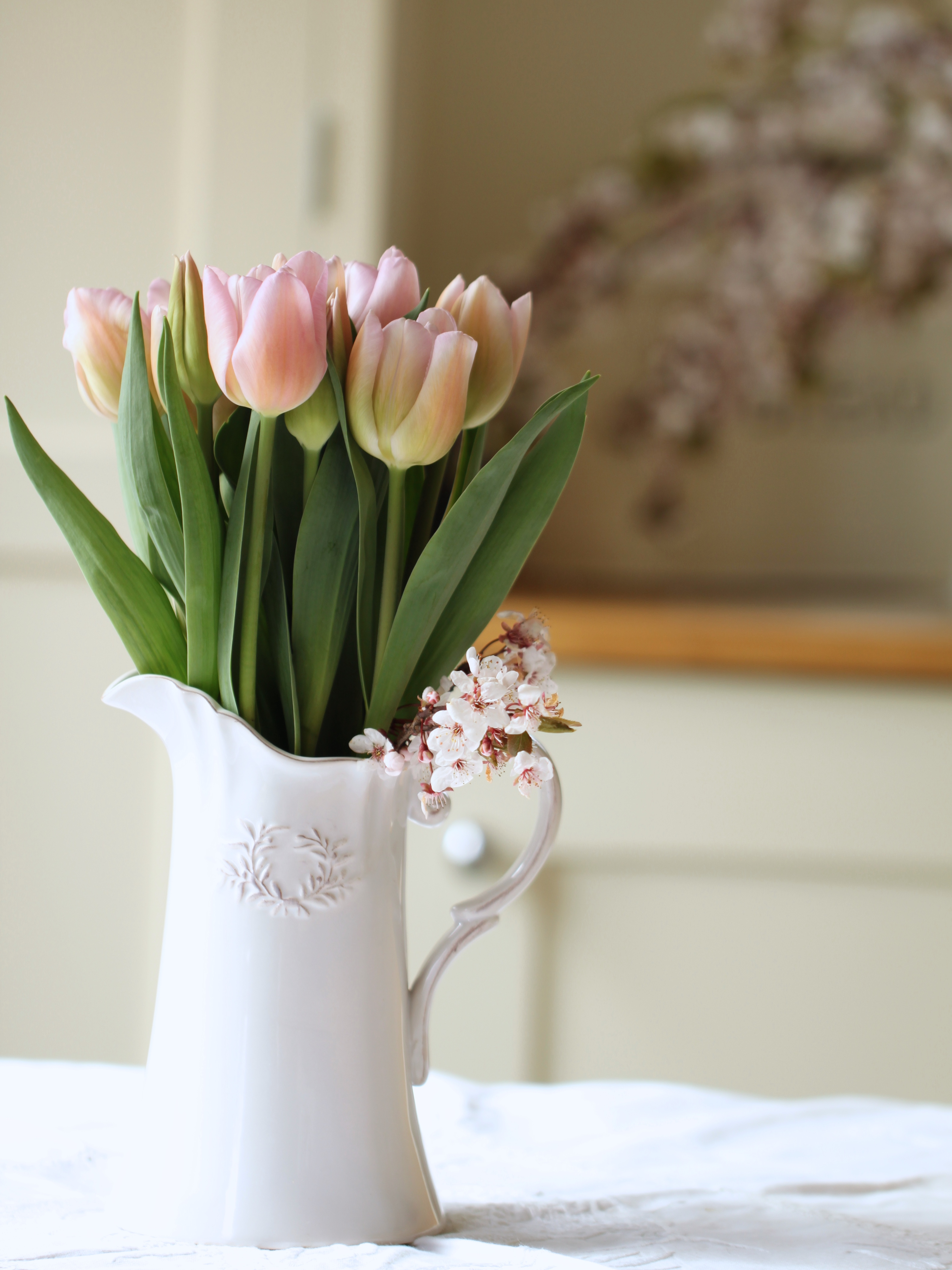 Pink-Tulips -and- Blossom.