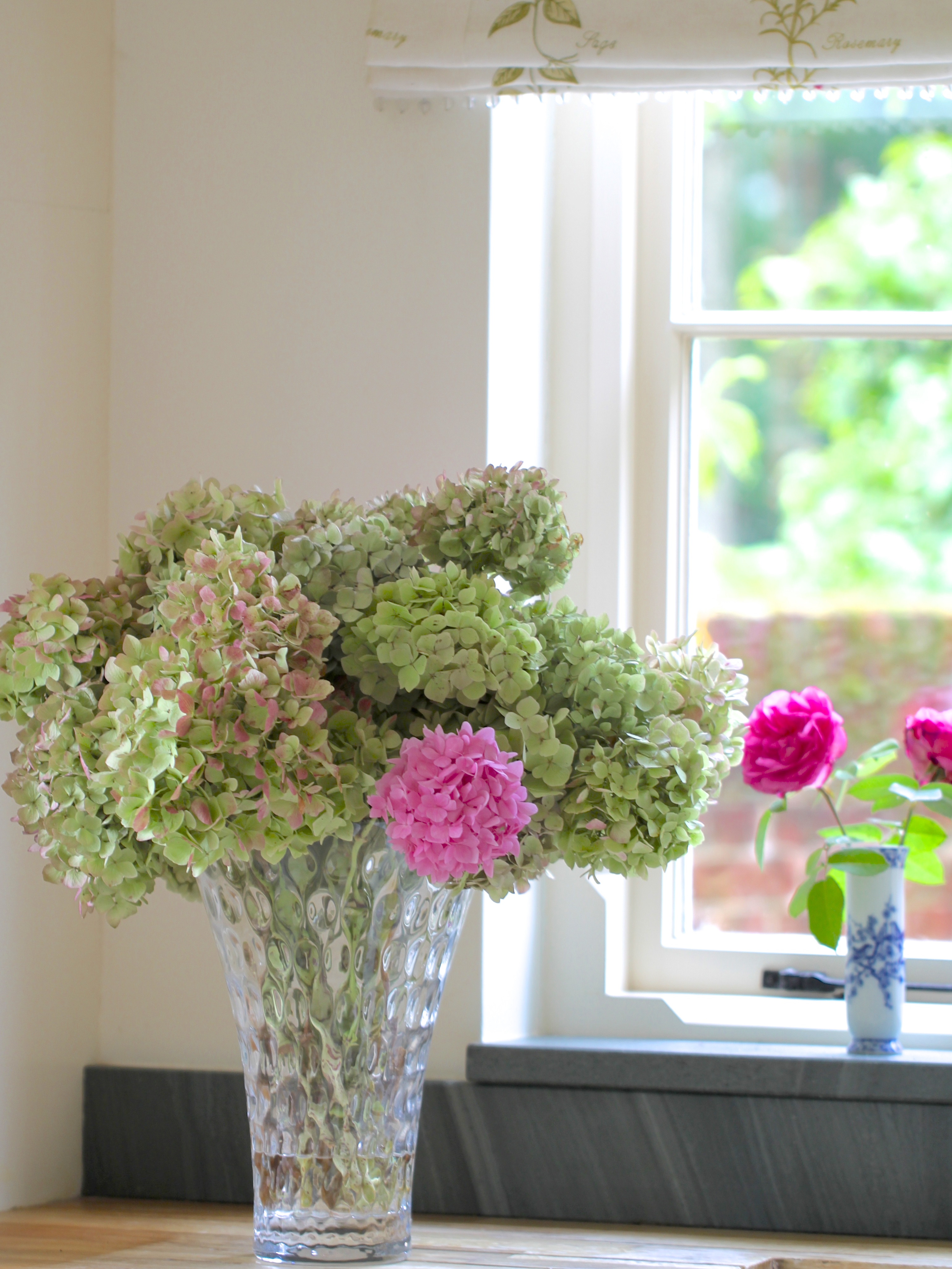 Drying-Hydrangeas